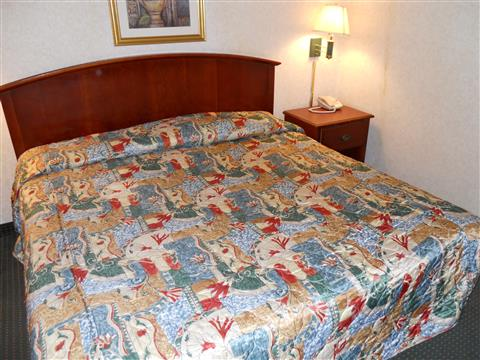 One King Bed Privacy Suite