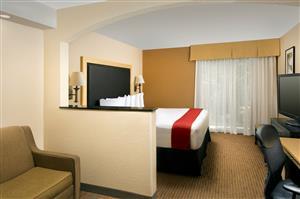 Room - Best Western Alamo Inn & Suites San Antonio
