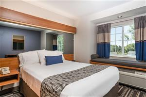 Suite - Microtel Inn & Suites by Wyndham Springfield