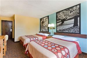Room - Super 8 Hotel Lexington Park California