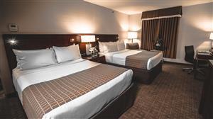 Room - Lord Elgin Hotel Ottawa